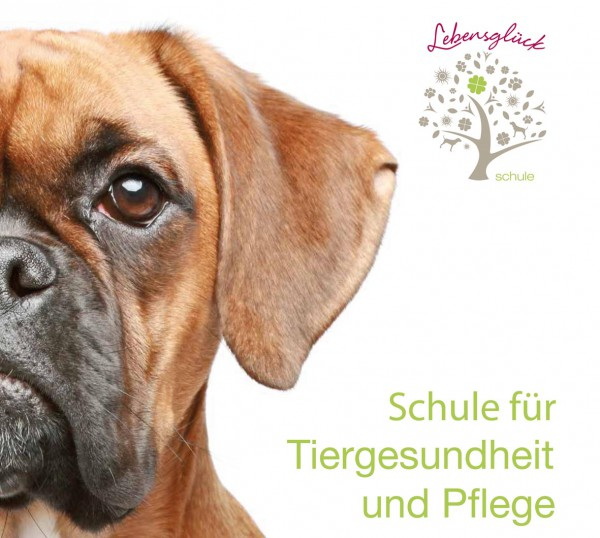 Titel_Lebensglueck_Schaumberger