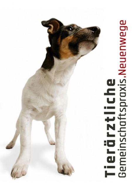 Lowenherz_Titel_Tierarzt.