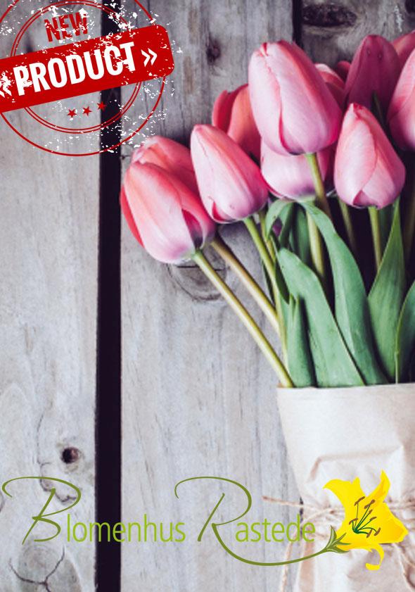 Titel-Blomenhus-Rastede-I